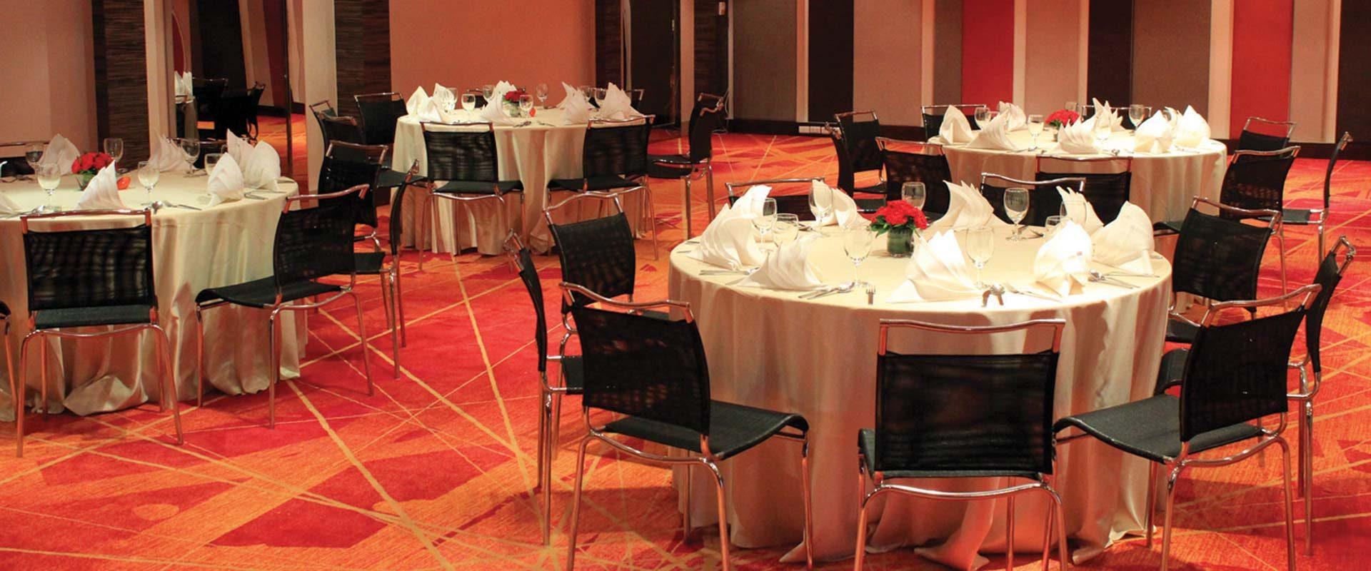 dusitd2-chiangmai-event-l-meeting-room