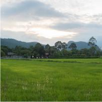 Khao Yai Local Explorer