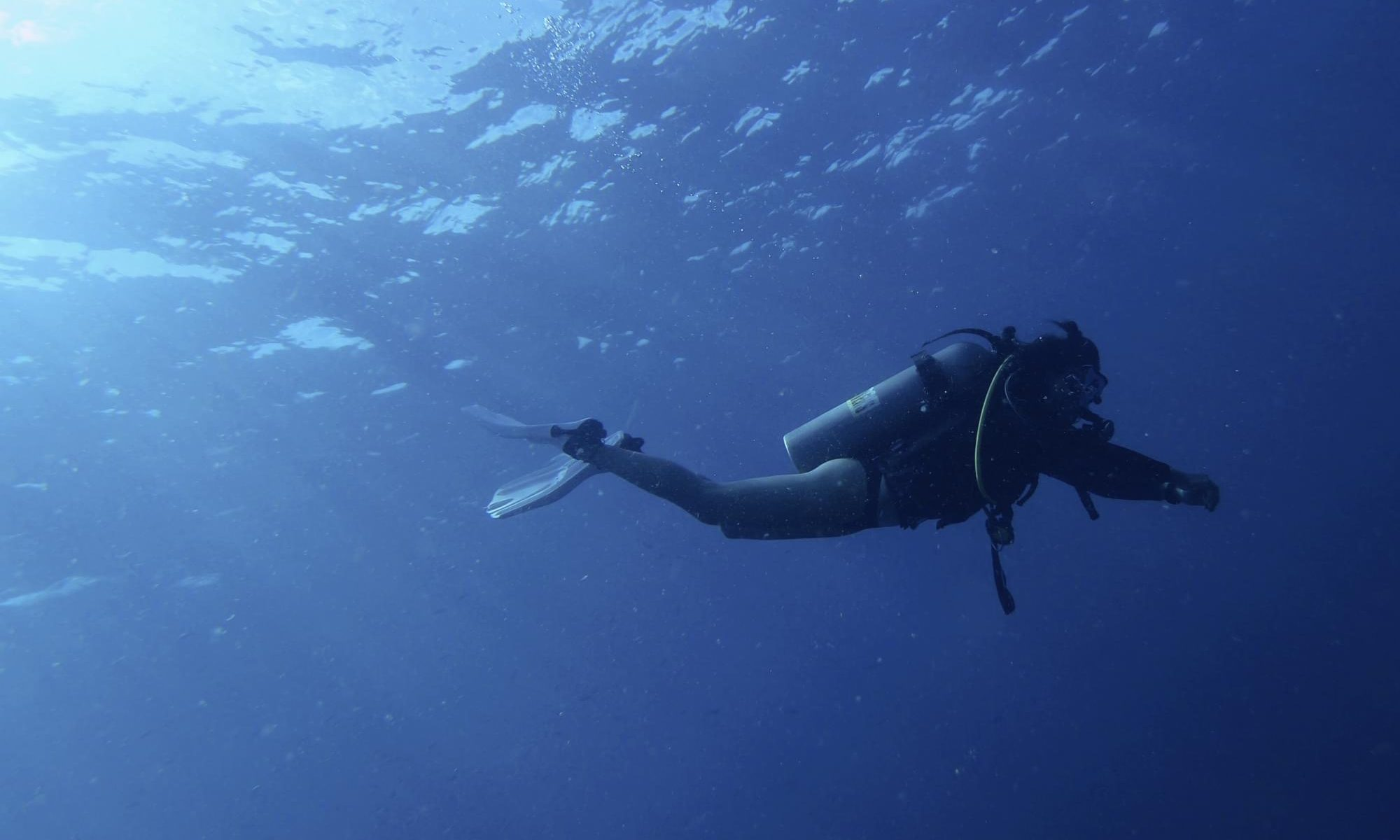 Experience Scuba Diving with Dusit Hotels and Resorts
